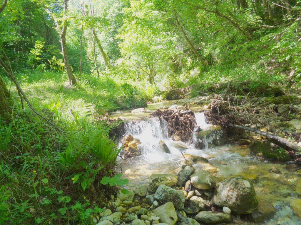 Fiume Foro 14# Valle del Foro, Majella: immergersi nella natura.