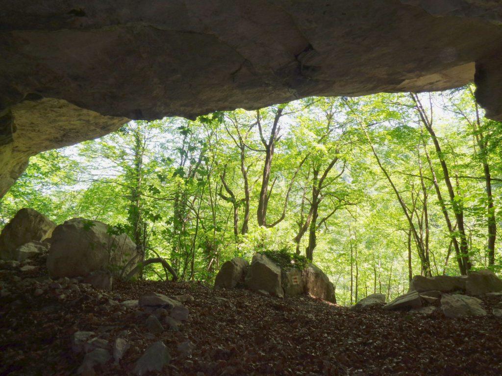 Grotta delleremita 14# Valle del Foro, Majella: immergersi nella natura.