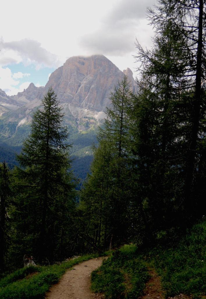 """Tofana Rozes 1 13 anelli escursionistici """"firmati"""" da provare"""