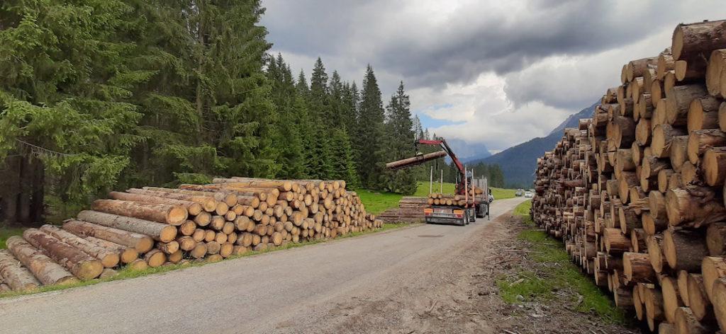 Trasporto legname copia Vacanze da schianto
