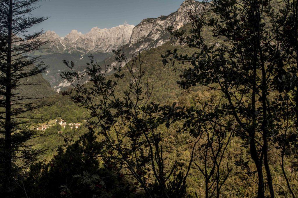 Gena Alta, verso il Zimon de Gena nelle Dolomiti bellunesi