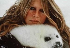 Brigitte Bardot con foca