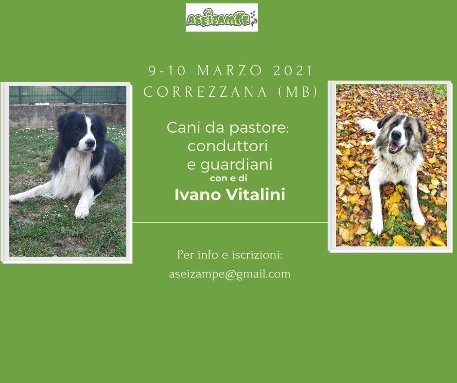"""123478796 3309036072526703 735824568156805366 n Le razze dei """"cani da montagna"""" - parte 2"""