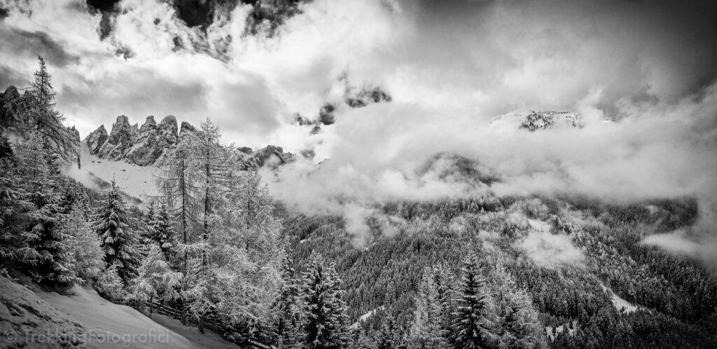 mirko sotgiu mirko sotgiu  DSC7834 web web 5 consigli per fotografare la neve