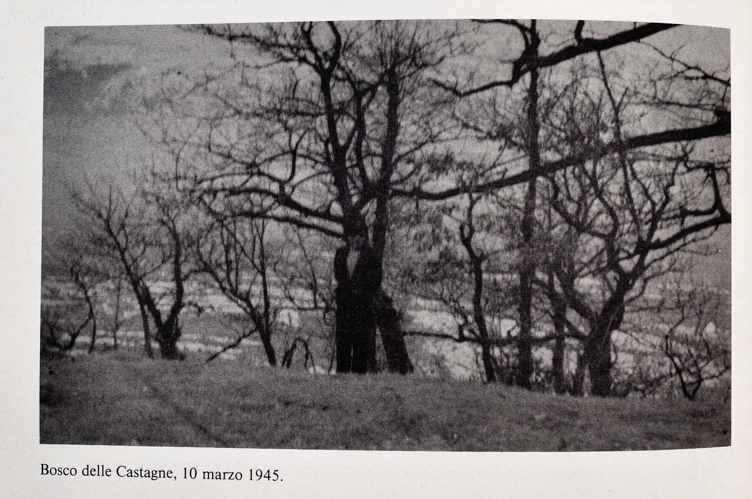 bosco delle castagne 1 scaled Bosco delle castagne: 10 marzo 1945