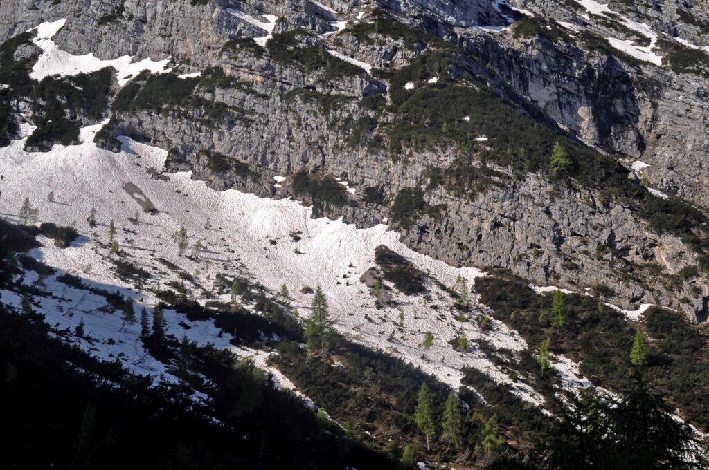 La testata della Val Fresca con i larici solitari - bus de le neole