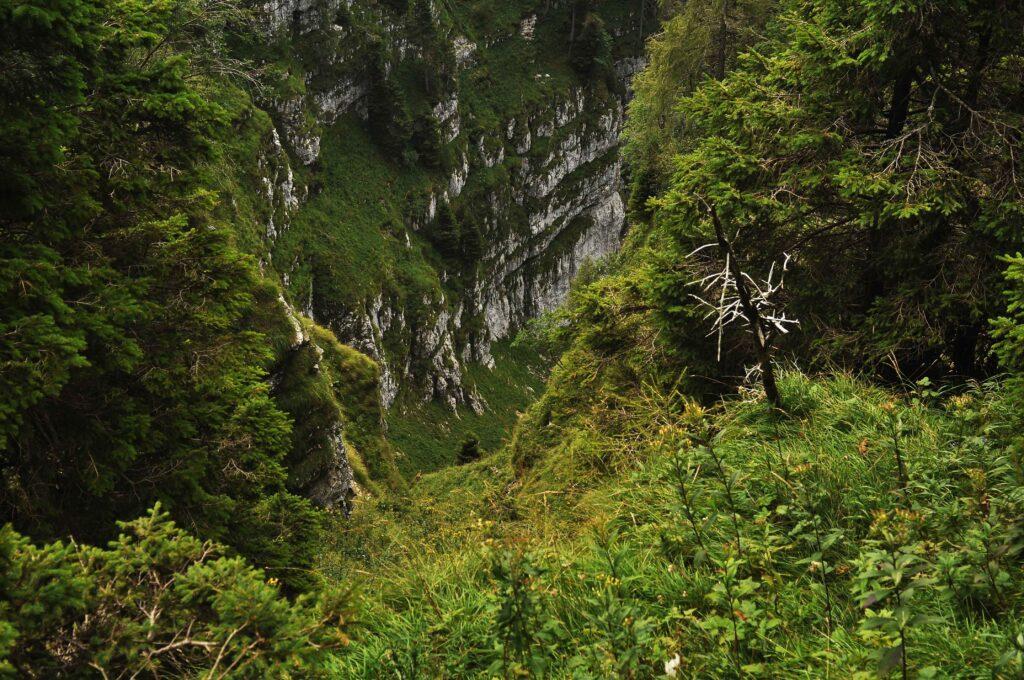 Sentieri parco nazionale delle dolomiti bellunesi